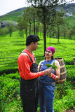 Jeunes couples traditionnels indiens photo libre de droits