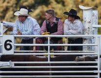 Jeunes cowboys Image libre de droits