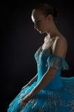 jeunes de ballerine Images stock