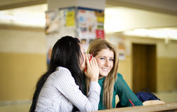 jeunes de partage secrets de femme image libre de droits