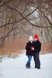 jeunes de sourire de l'hiver d'amour heureux de couples Photographie stock