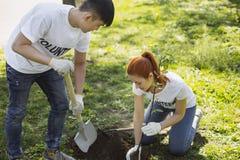 Jeunes deux volontaires plantant l'arbre photos stock