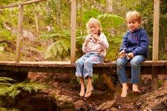 Jeunes enfants de mêmes parents jouant sur un pont dans une forêt Image stock