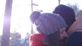 Jeunes et beaux couples dans l'amour marchant dans les bois d'hiver banque de vidéos