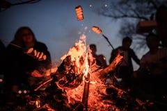 Jeunes et gais amis s'asseyant et guimauves de friture sur le premier plan du feu Photo stock