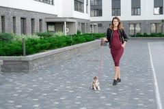 Jeunes femmes attirantes marchant avec le chiot enroué sur la rue Image libre de droits