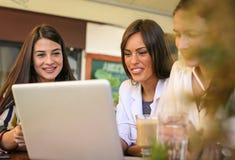 Jeunes femmes d'affaires au café Fin vers le haut Photographie stock