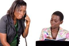 Jeunes femmes d'affaires dans le bureau image libre de droits