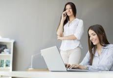 Jeunes femmes dans le bureau Image stock
