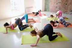 Jeunes femmes de groupe s'étirant et yoga de pratiques Image libre de droits