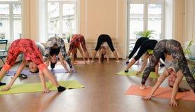 Jeunes femmes de groupe s'étirant et yoga de pratiques Photo stock