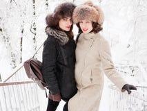 Jeunes femmes heureuses adorables de brune tenant des mains dans le chapeau de fourrure ayant la forêt neigeuse de parc d'hiver d Images stock