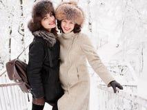 Jeunes femmes heureuses adorables de brune tenant des mains dans le chapeau de fourrure ayant la forêt neigeuse de parc d'hiver d Image libre de droits