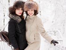 Jeunes femmes heureuses adorables de brune tenant des mains dans le chapeau de fourrure ayant la forêt neigeuse de parc d'hiver d Image stock
