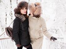 Jeunes femmes heureuses adorables de brune tenant des mains dans le chapeau de fourrure ayant la forêt neigeuse de parc d'hiver d Photographie stock libre de droits