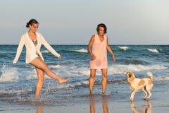 Jeunes femmes jouant avec leur chien Image stock