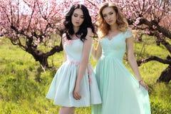 Jeunes femmes magnifiques dans la robe élégante posant dans le jardin avec des blos Photographie stock