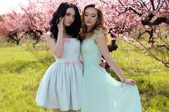 Jeunes femmes magnifiques dans la robe élégante posant dans le jardin avec des blos Photos libres de droits