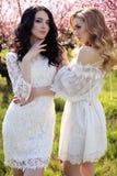 Jeunes femmes magnifiques dans la robe élégante posant dans le jardin avec des blos Image libre de droits