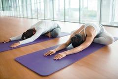 Jeunes femmes pratiquant le yoga Photo stock