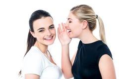 Jeunes filles bavardant et ayant l'amusement Images stock