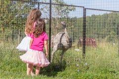 Jeunes filles de sourire heureuses d'enfant alimentant l'autruche d'émeu à la ferme d'oiseau Photographie stock libre de droits