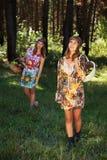 Jeunes filles heureuses avec une corbeille de fruits sur la nature Images libres de droits