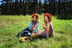 Jeunes filles heureuses avec une corbeille de fruits sur la nature Photos stock