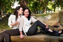 Jeunes filles heureuses s'asseyant sur des rondins buvant du vin Photographie stock