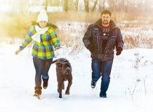 Jeunes garçon attirant et fille jouant avec un chien Photographie stock libre de droits