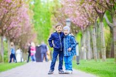 Jeunes garçons souriant tout en se tenant sur la ruelle en parc Image libre de droits