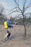 Jeunes hommes beaux Un agriculteur masculin sans eaux personnelles d'équipement de protection empoisonnent les arbres fruitiers photo stock