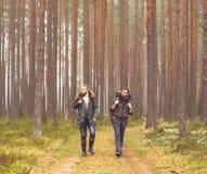 Jeunes hommes de touristes avec des sacs à dos dans la forêt Photo libre de droits