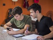 Jeunes hommes occupés avec des études Photo libre de droits