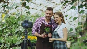 Jeunes jardiniers de sourire de couples de blogger dans le tablier tenant la fleur parlant et blog visuel de enregistrement pour  photos libres de droits