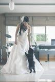 Jeunes jeune mariée et chien Photographie stock libre de droits