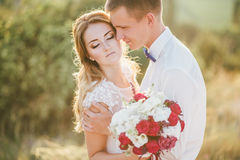 Jeunes juste ménages mariés heureux posant sur le dessus de la montagne Photographie stock
