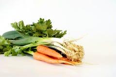Jeunes légumes frais Photo stock