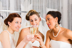 Jeunes mariées buvant du champagne dans la boutique de mariage image stock