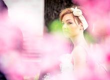 Jeunes mariées d'emballement cosmopolites, Moscou, 2013 Images stock