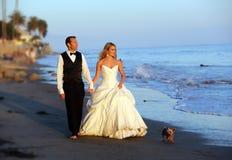 Jeunes mariés photographie stock
