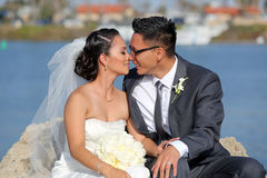 Jeunes mariés Images libres de droits