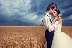 Jeunes mariés affectueux s'embrassant dans le domaine de blé Photo libre de droits
