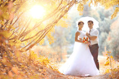 Jeunes mariés au parc d'automne Image stock