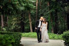 Jeunes mariés aux nouveaux mariés de mariage Image libre de droits