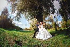Jeunes mariés avec des sucreries dans des mains Images libres de droits