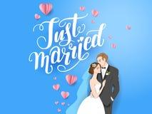 Jeunes mariés bleus de contexte illustration stock