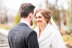 Jeunes mariés d'amants dans le jour d'hiver image libre de droits