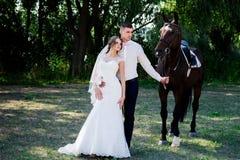 Jeunes mariés dans la forêt avec des chevaux Couples de mariage Beau portrait en nature Photographie stock libre de droits