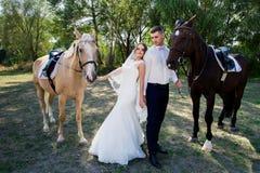 Jeunes mariés dans la forêt avec des chevaux Couples de mariage Beau portrait en nature Photos libres de droits